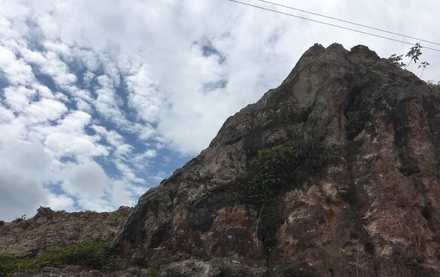 Guide to Tadom Hill: A campground with fun activities
