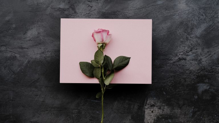 Valentine's gift/surprise ideas for her